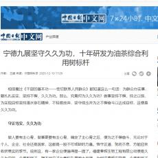 转载中国日报:宁德beplay手机客户端下载久久为功,十年研发为油茶综合利用树标杆